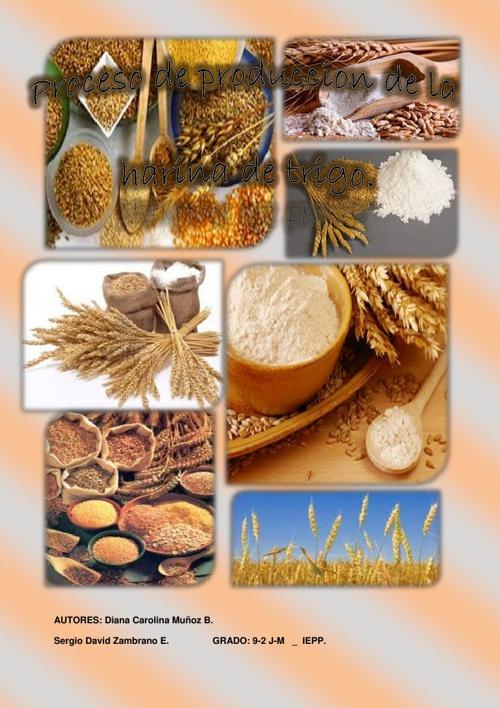 Proceso de produccion de la harina de trigo.