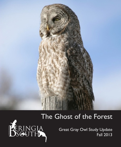 The Ghost of the Forest