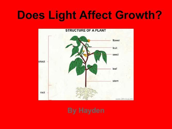 haydens plant book