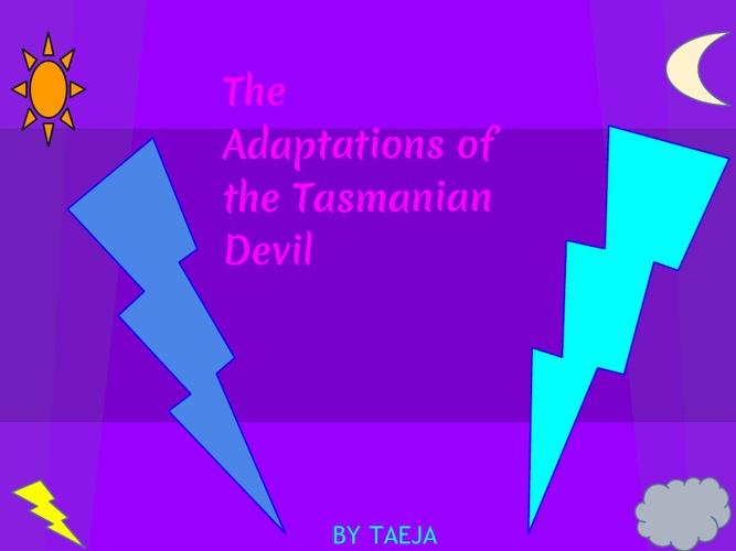 The Adaptations of the Tasmanian Devils