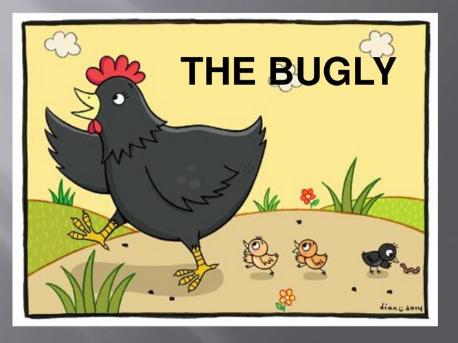 THE BUGLY