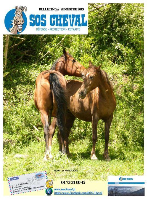 Bulletin SOS cheval 1Sem 2015