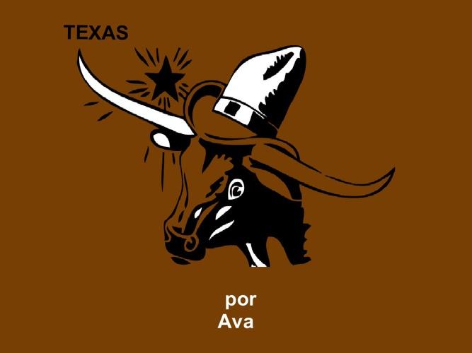 Ava TEXAS