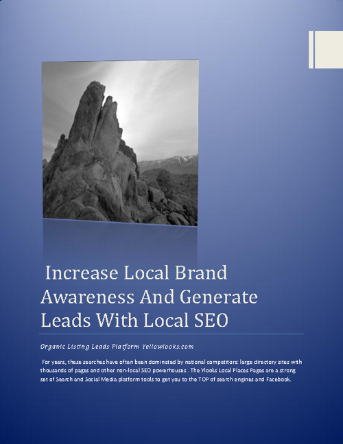 Increase local brand awarness and generate Leads with Local SEO