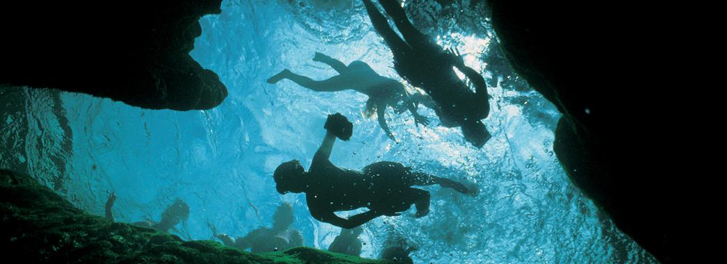 8 snorkeling wekiwa springs