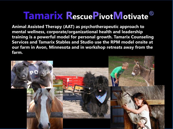 TamarixRPM Flipbook Summary