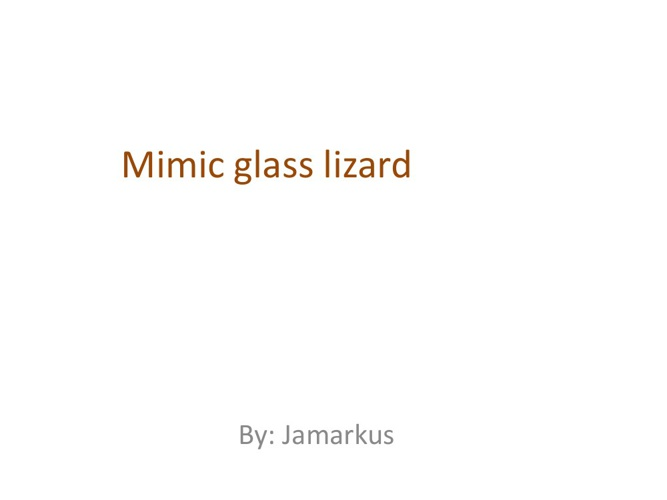 Jamarkus Mimic Glass Lizard