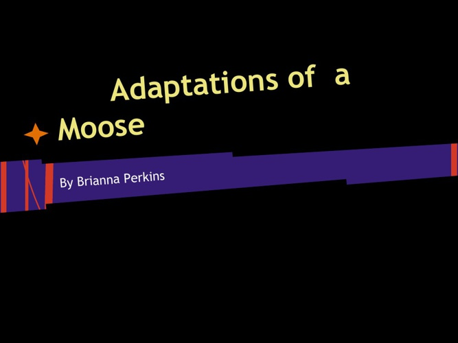 Adapations of a Moose