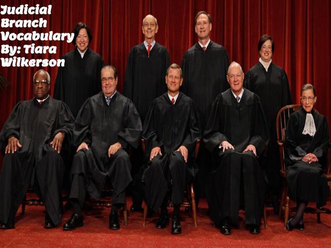 Judicial Branch Vocabulary