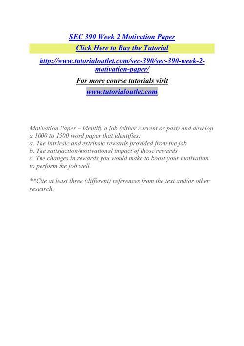 SEC 390 Week 2 Motivation Paper