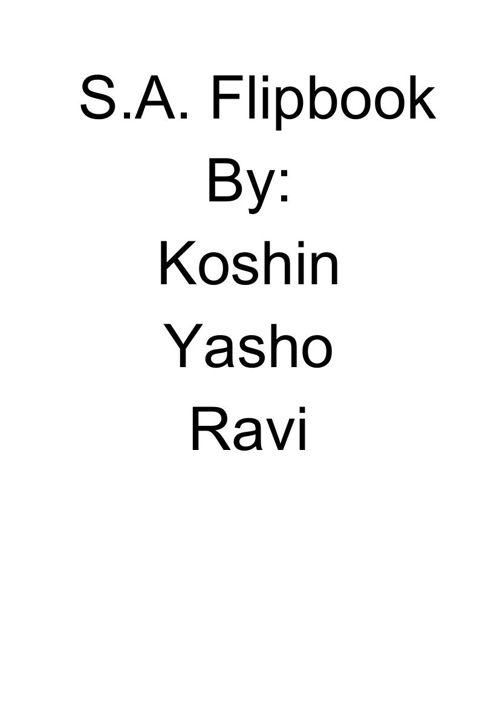 S.A.Flipbook (2)