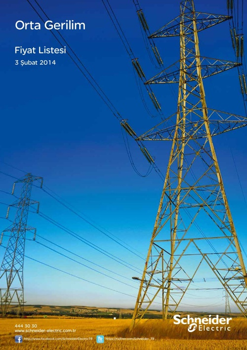 Schneider Elektrik Orta Gerilin Fiyat Listesi
