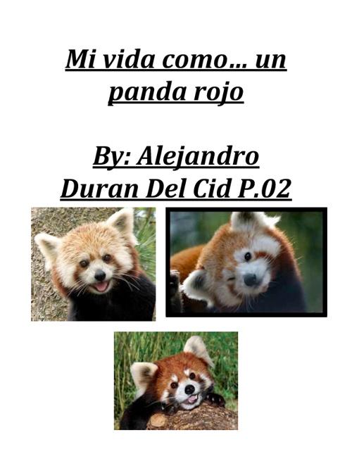 Ronny El Panda Rojo