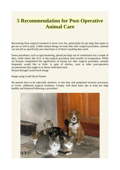 5 Recommendation for Post-Operative Animal Care