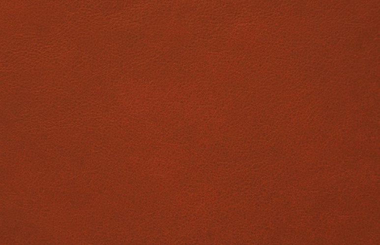 James Coney Island Brand Book