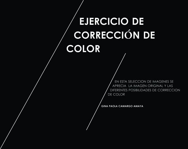 CORRECCION DE COLOR