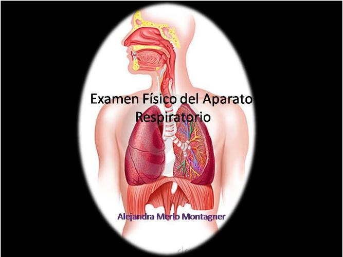 Examen Físico del Sistema Respiratorio