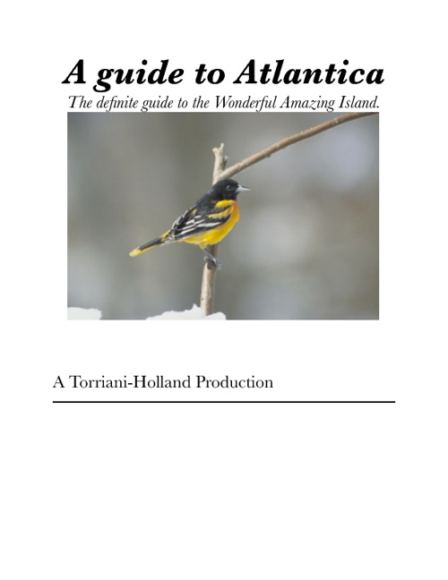 A guide to Atlantica