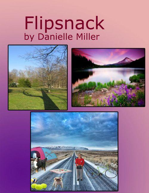 flip snack digital arts