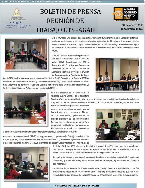 BOLETIN INFORMATIVO REUNION CTS AGAH 31 DE ENERO