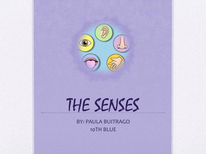 The Senses: Vision & Taste