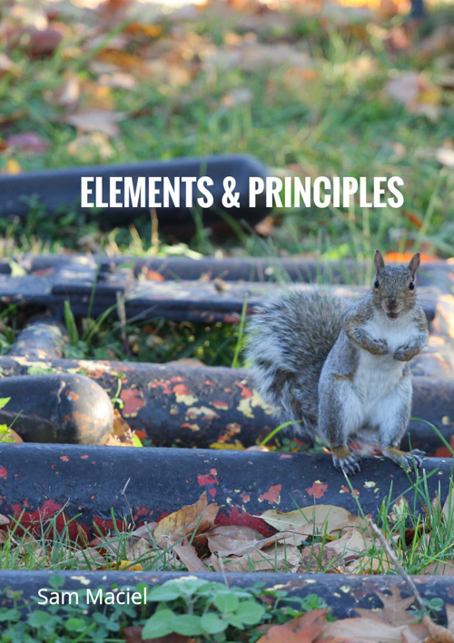 "Sam Maciel ""Elements & Principles"""