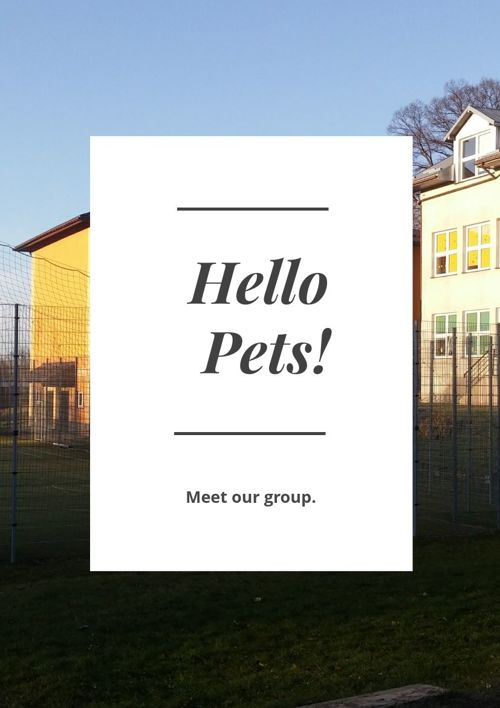 Hello Pets! - Meet our group.