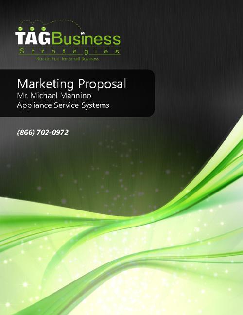 Mannino - Appliance Service Systems Marketing Proposal
