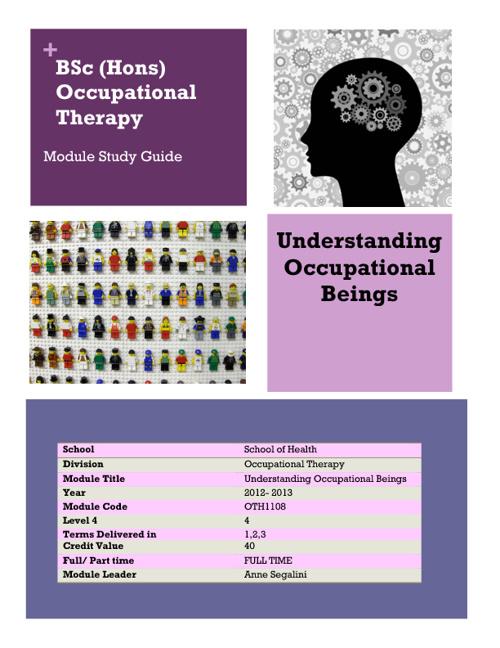 Understanding Occupational Beings