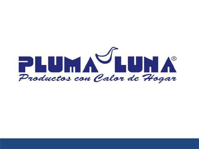 Presentación Pluma Luna Broshure