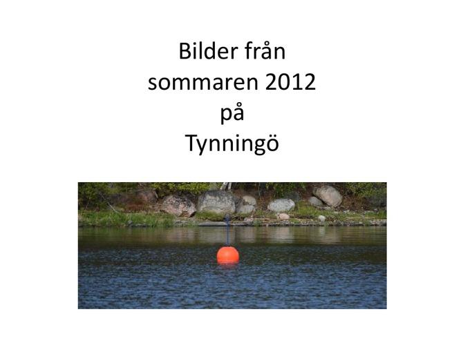 Sommaren på Tynningö 2012