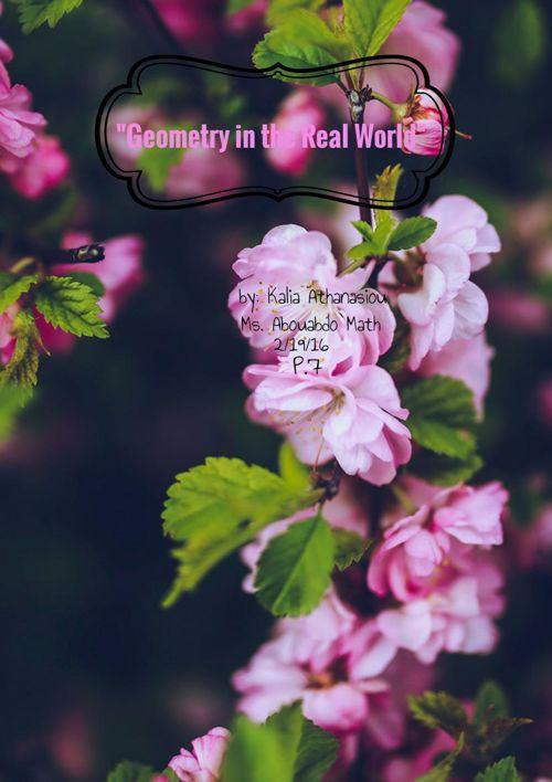 Kalia's Geometry Vocabulary