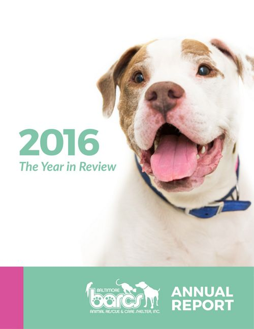 BARCS Annual Report 2016