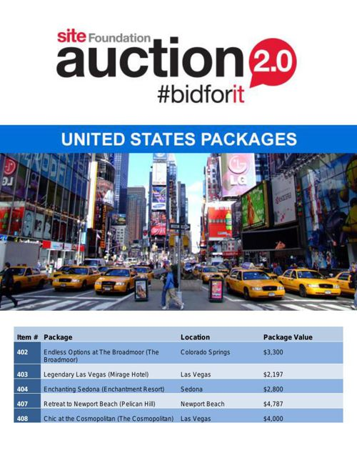 SITE Auction - United States