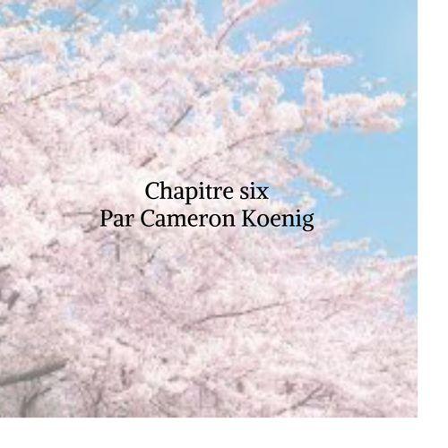 Chapter 6 Translation