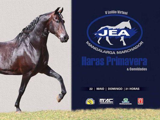 Leilão JEA 2016.pdf_page_02