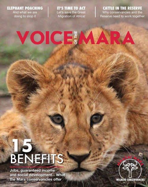 Voice of the Mara (First Edition)