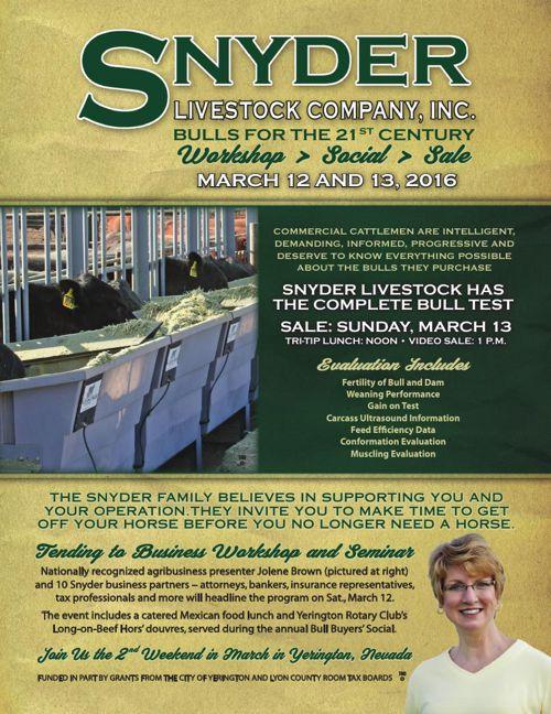 Snyder Livestock Bull Sale