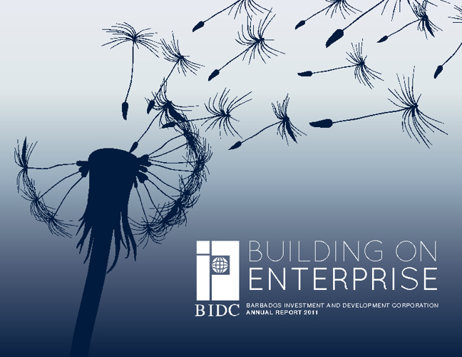 BIDC ANNUAL REPORT FINAL DRAFT