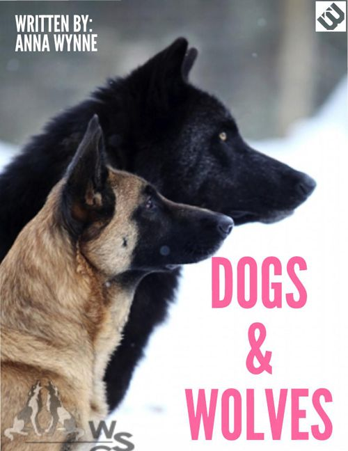 wolves and dogs