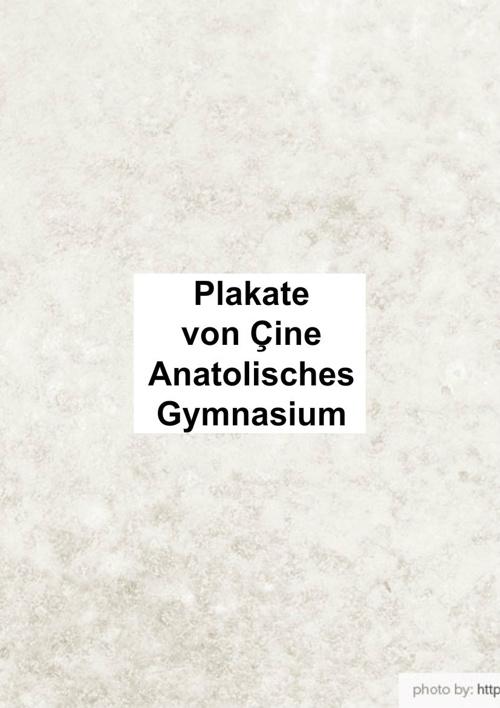 Çine Anatolisches Gymnasium