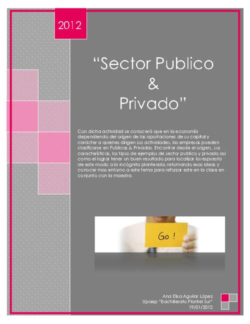 Sector Privado_&_Sector Publico
