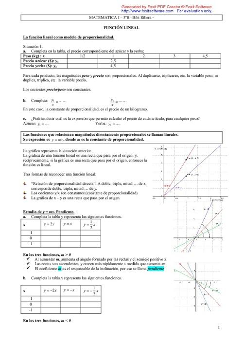 Función Lineal- Función Afín