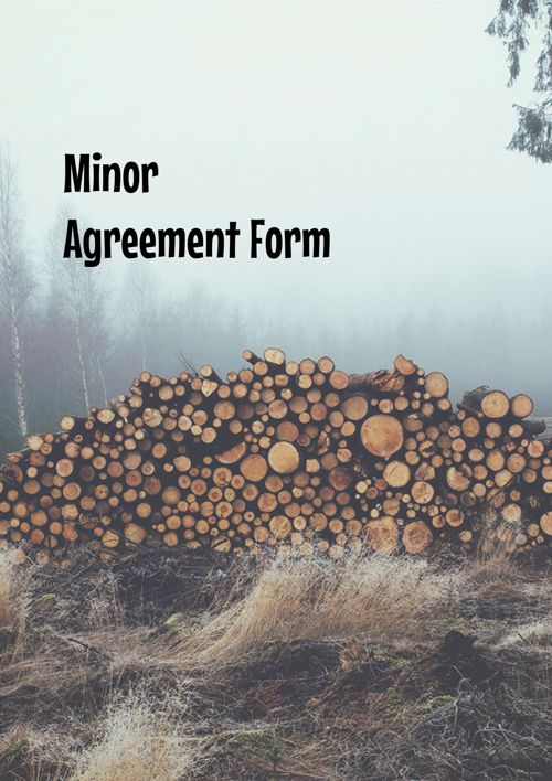 minor model performer release agreement page 1