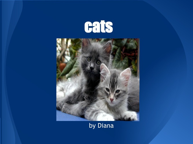 Cats by Diana