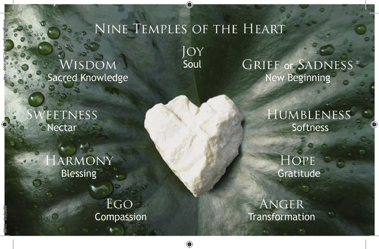 The Nine Temples of the Heart Part2