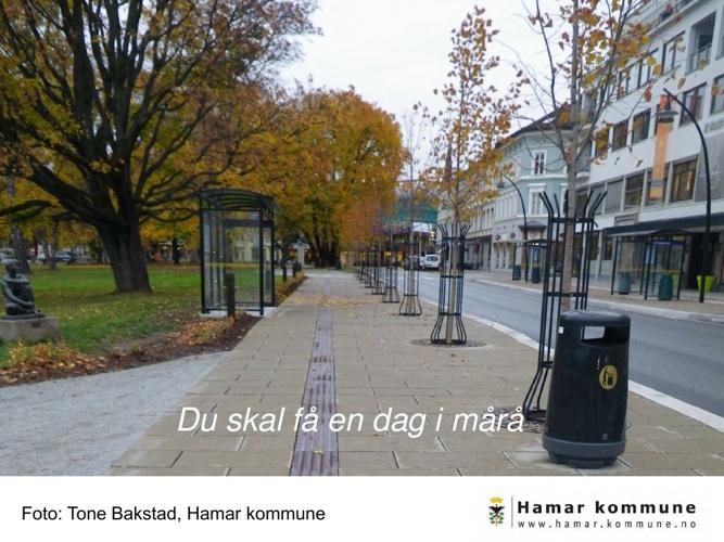 Hamar kommunes utomhusområder