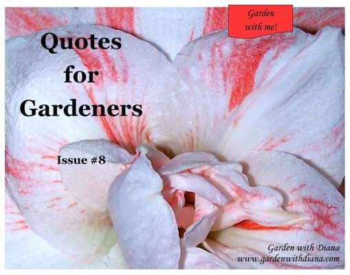 Quotes for Gardeners - Winter - Issue #8