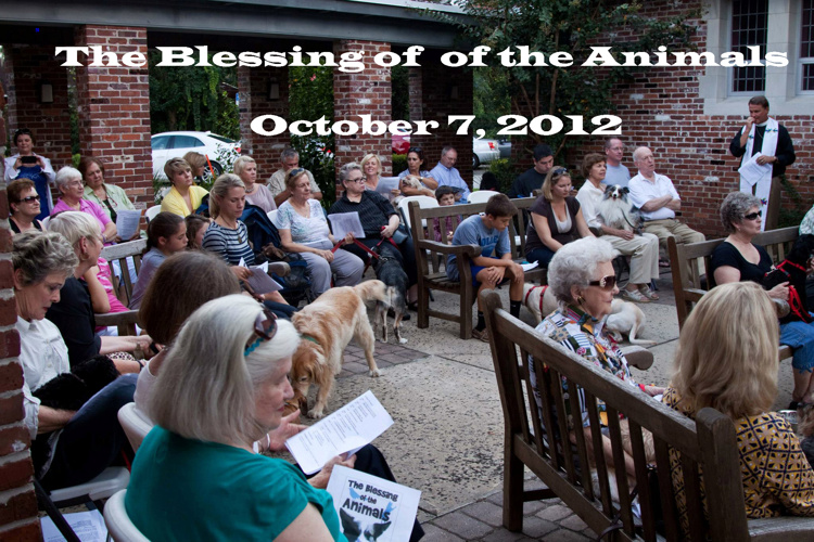 Blessing of the Animals 2012