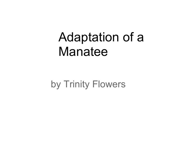manatee adaptations trinity